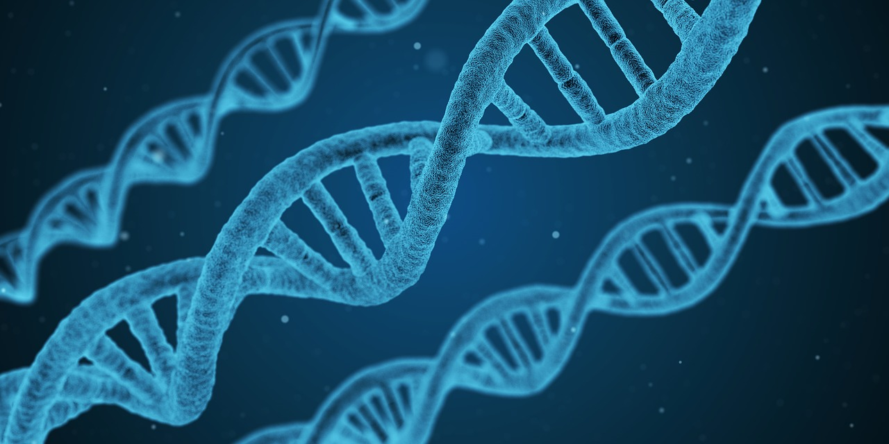 Exame genético e cirurgia preventiva diminuem risco de câncer no ovário, diz ginecologista